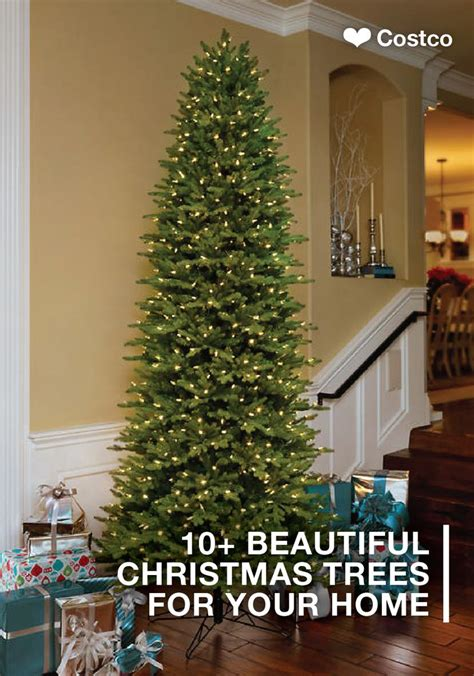 xmas tree storage bag st costco 79 best home for the holidays images on presents gift baskets and