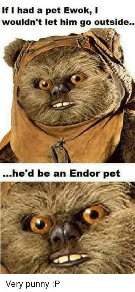 Ewok Meme - if i had a pet ewok i wouldn t let him go outside he d be