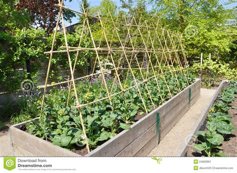 Superior How To Make A Vege Garden #4: Kitchen-garden-24903961.jpg