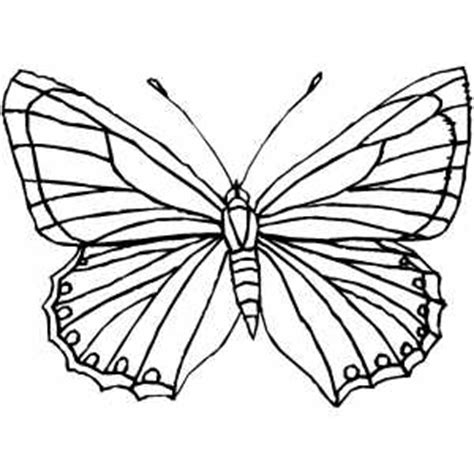 butterfly rainbow coloring page preschool coloring sheets butterfly flowers color number