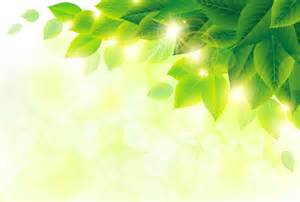 Free Green green leaf free vector download 8 368 free vector for commercial use