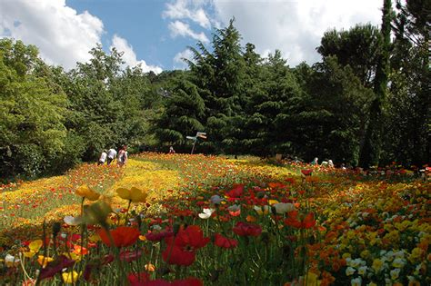 giardini botanici merano giardini di castel trauttmansdorf giardino botanico merano