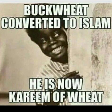 Buckwheat Meme - buckwheat meme memes