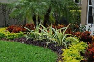 south florida landscape summer landscaping and gardening tips for south florida