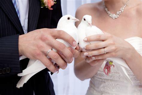 Hochzeit Tauben by Hochzeitstauben Ein Romantisches Ritual