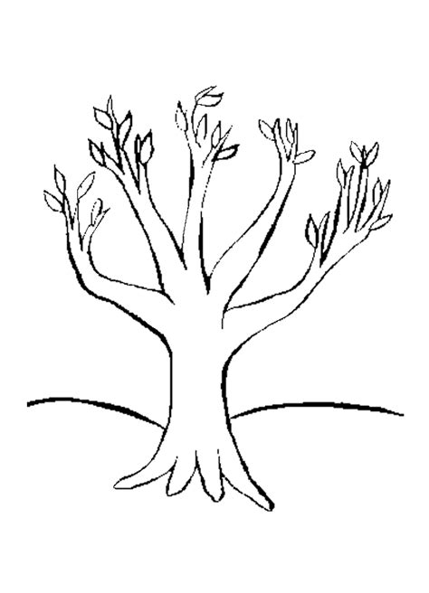 tree trunk coloring page az coloring pages clipart