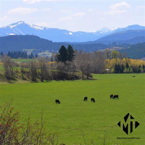 freelander for sale bozeman mt bridger land for sale bridger real estate