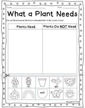 the cycle of a plant worksheet plant cycle worksheets observation journal crafty