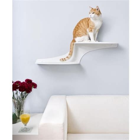 Cat Clouds Cat Shelf by 9 Best Images About Cat From Hell Jackson On