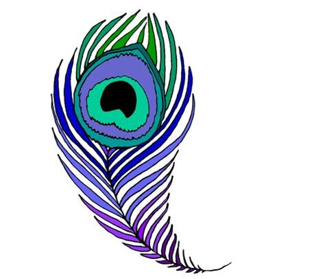 coloring pages of peacock feathers peacock feather coloring page clipart panda free clipart images
