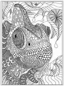 coloring pages for adults org coloring pages best coloring pages animals for