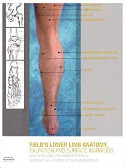 Lower Limb Anatomy Palpation Amp Surface Markings 1e