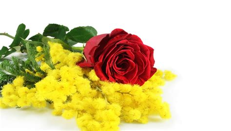 fiori paolo spa bouquet floreale di mimose e rosse kauppa