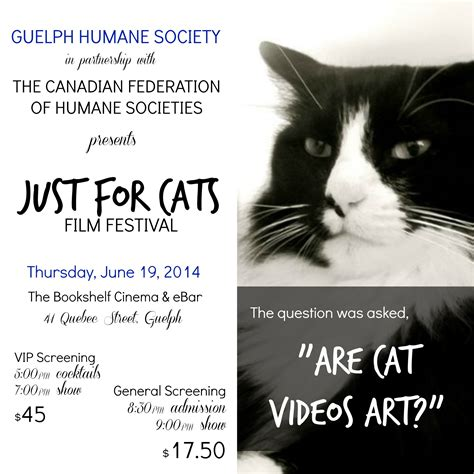 Bookshelf Guelph Just For Cats Film Festival Presented By The Guelph Humane