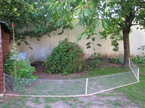 un b 233 b 233 z h 233 risson dans mon jardin page 4