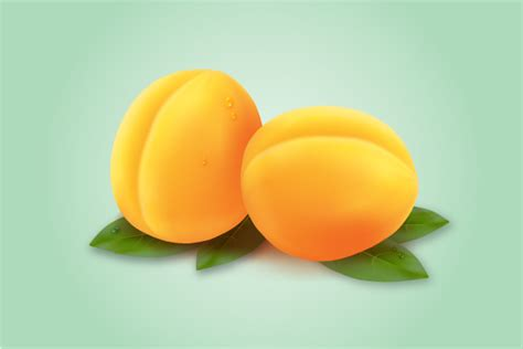 tutorial illustrator fruit quick tip how to draw an apricot with the mesh tool