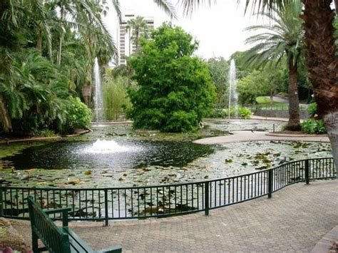 Botanical Gardens Brisbane City Top 30 Things To Do In Brisbane Australia On Tripadvisor Brisbane Attractions Find What To