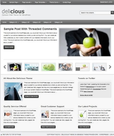 Themes Wordpress Cms | cms wordpress themes for small business websites dobeweb