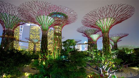 gardens by the bay in singapore expedia