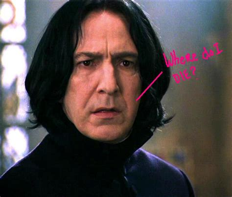 Chappaquiddick Harry Potter Wallpaper Insights Alan Rickman Snape