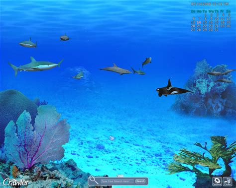 serenescreen marine aquarium download serenescreen marine aquarium download tattoo design bild