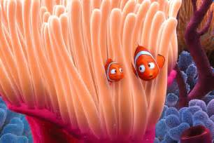 anemone finding nemo finding nemo is a hermaphroditic lie says science