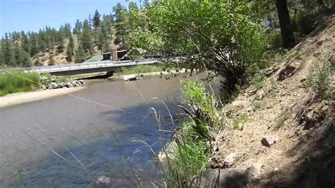 colorado fishing reports south platte south platte river cheesman deckers colorado fly fishing