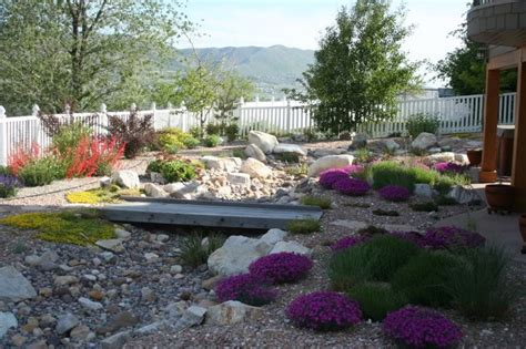 18 best images about xeriscaping on lawn