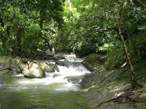 Panoramio - Photo of Pa-La-Oo Waterfall - Kaeng Krachan National Park ... Camera