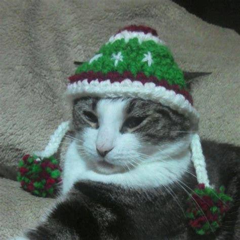 cat hat crochet pattern crochet cat hat craft ideas pinterest