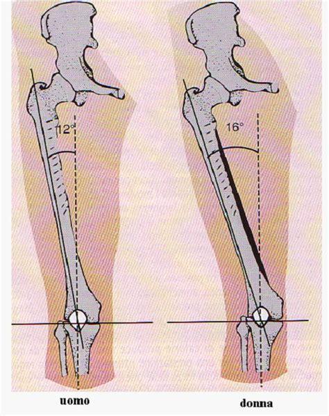 condropatia femoro tibiale interna la sindrome femoro rotulea sport e medicina