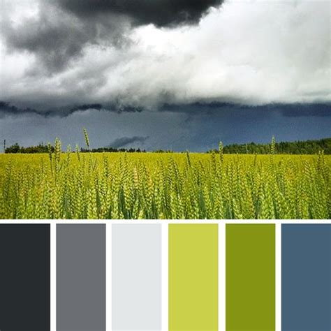 nature colors 25 best ideas about green color schemes on pinterest