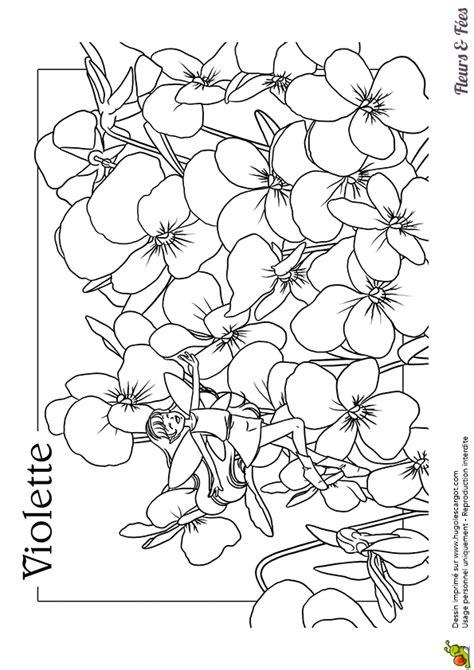 Coloriage Violettes - OHBQ.info