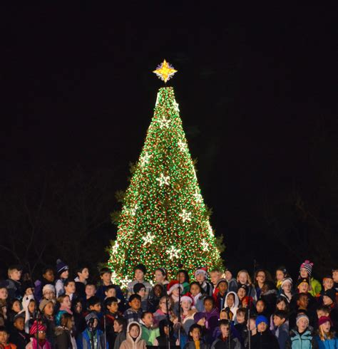visiting national christmas tree at night u s capitol tree to visit missoula during 2015 trek