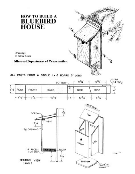 Twin Bridges Nature Resort Bird Houses Craig S Post Bluebird House Plans