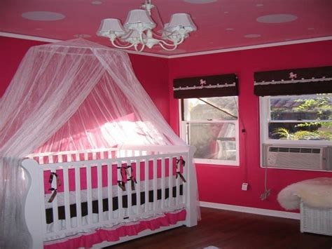 themes for newborn girl miscellaneous baby girl room themes interior
