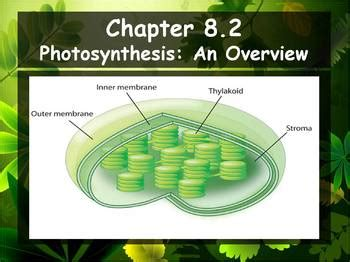 section 8 3 the reaction of photosynthesis section 8 2 photosynthesis an overview 100 images