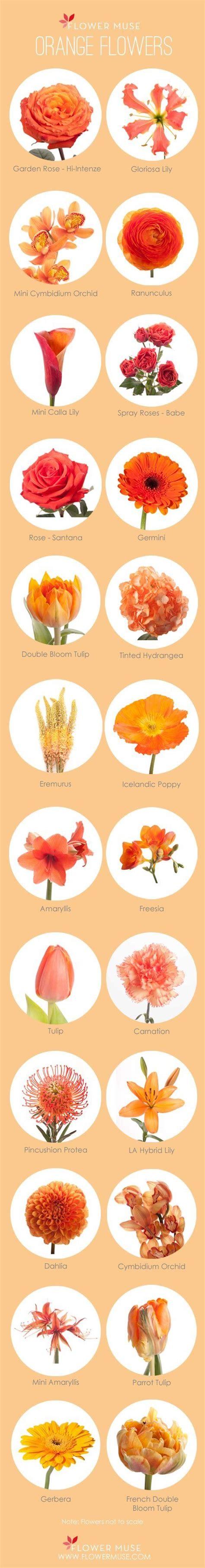 Best 25 Orange Wedding Flower Arrangements Ideas On