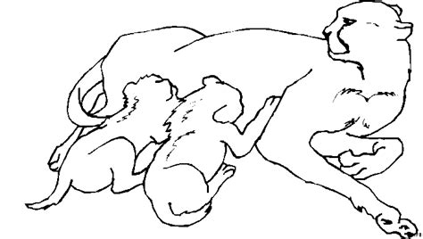 Animal Coloring Pages Cute Adult Pig Coloring Pages Drawing Pigs