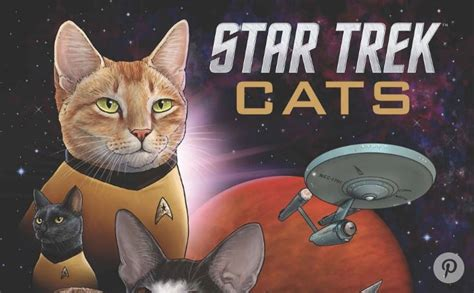 with cats 31 stretches inspired by cats books cats replace the trek cast in new book i can has