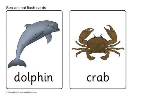 free printable sea animals flashcards sea animals wall cards sea animal flash cards sb7725 sparklebox