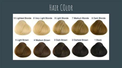 color descriptions physical descriptions