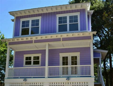 picture of a house building a tiny purple house on tybee