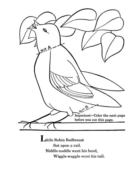 american robin coloring page free american robin coloring pages