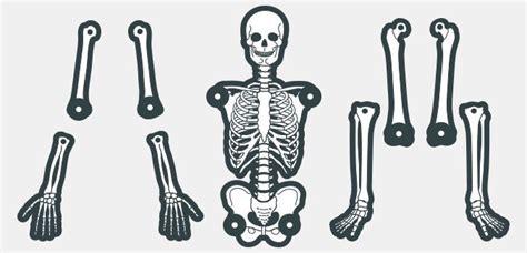 printable paper skeleton create your own skeleton paperzip