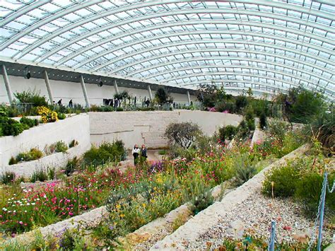 Botanical Garden Wales Great Glass House Holds Mediterranean Treasures At The National Botanic Garden Of Wales Great