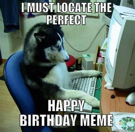 Cute Birthday Meme - best 25 happy birthday meme ideas on pinterest funny