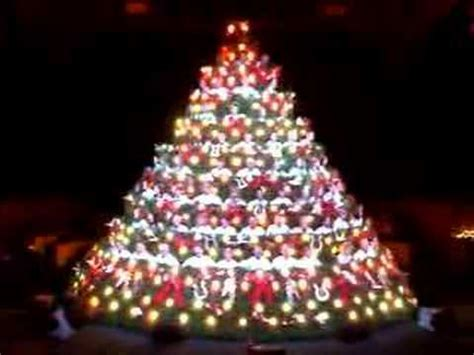 how to stop my live christmas tree from lening living tree the light