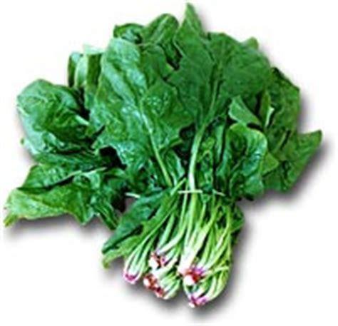 verdure ricche di ferro alimenti vegetali con un alta