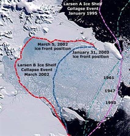 larsen shelf